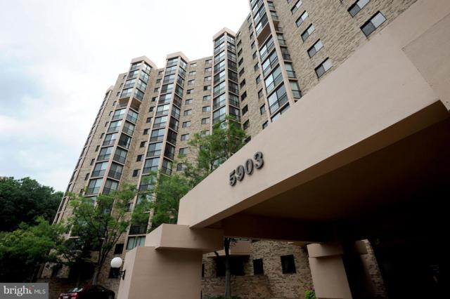 5903 Mount Eagle Drive #818, ALEXANDRIA, VA 22303 (#1002820980) :: RE/MAX Cornerstone Realty