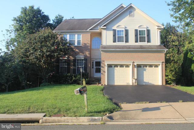 6410 Emerald Green Court, CENTREVILLE, VA 20121 (#1003289672) :: Colgan Real Estate