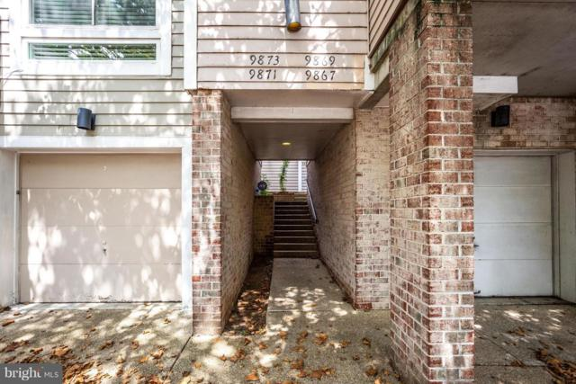 9869 Lake Shore Drive, GAITHERSBURG, MD 20879 (#1003320182) :: The Putnam Group