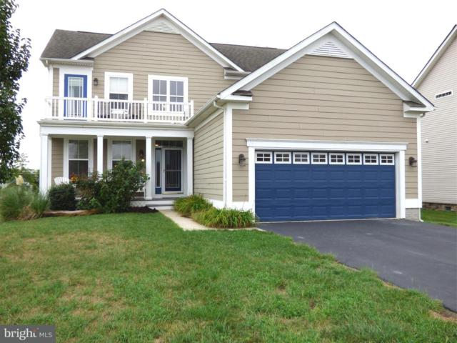 36874 Herring Court, SELBYVILLE, DE 19975 (#1003448496) :: The Windrow Group