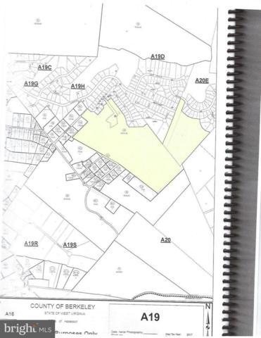 220 Stotelmyer Lane, MARTINSBURG, WV 25405 (#1003450560) :: Colgan Real Estate