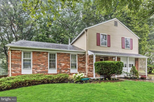 13602 Loree Lane, ROCKVILLE, MD 20853 (#1003479306) :: Remax Preferred | Scott Kompa Group