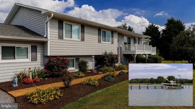 233 Shipping Creek Drive, STEVENSVILLE, MD 21666 (#1003645042) :: Remax Preferred | Scott Kompa Group
