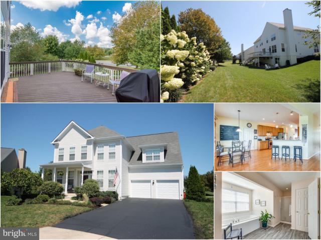 35736 Winslow Court, ROUND HILL, VA 20141 (#1003681686) :: Colgan Real Estate