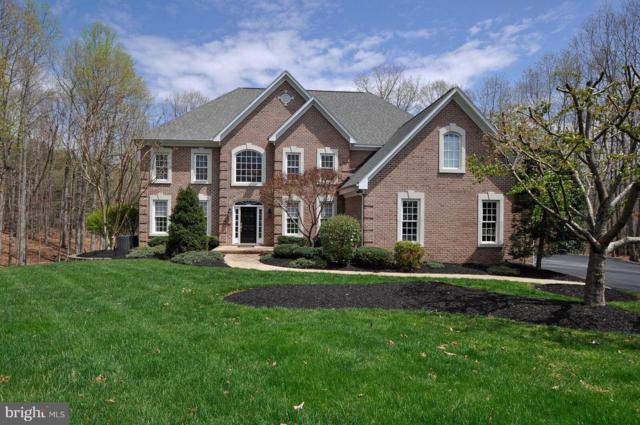 12005 Rockaway Court, SPOTSYLVANIA, VA 22553 (#1003797058) :: Colgan Real Estate