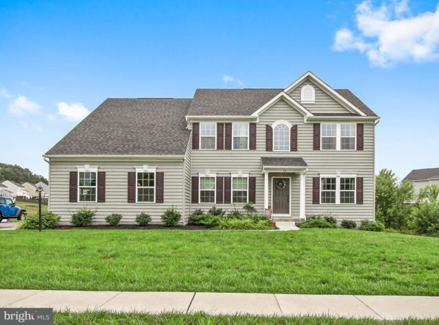 16 Leader Road, NEW FREEDOM, PA 17349 (#1003797100) :: The Jim Powers Team
