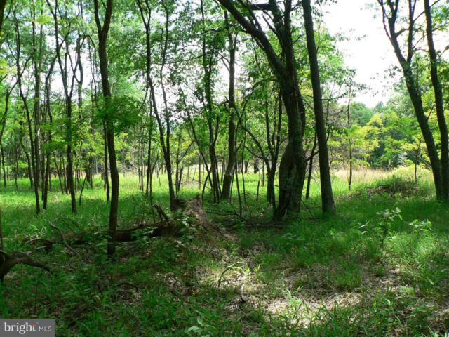 Lot 11 Top Of The Mountain, MOOREFIELD, WV 26836 (#1003797230) :: Peter Knapp Realty Group