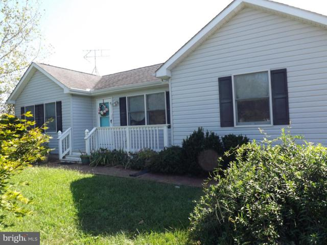 11048 Austin Court, WORTON, MD 21678 (#1004158424) :: Pearson Smith Realty