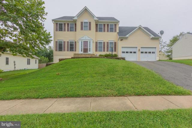 4 Cloverleaf Court, FREDERICKSBURG, VA 22406 (#1004171004) :: Great Falls Great Homes