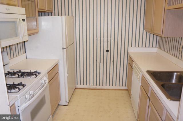 6640 Lake Park Drive 2B, GREENBELT, MD 20770 (#1004208910) :: Dart Homes