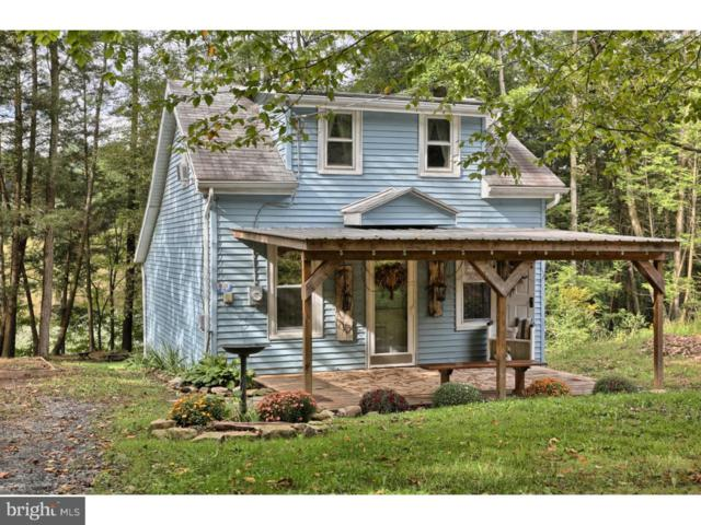 59 Lakefront Drive, PINE GROVE, PA 17963 (#1004223250) :: The Craig Hartranft Team, Berkshire Hathaway Homesale Realty