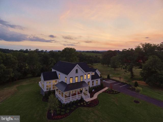 Courtney Meadow Place, LEESBURG, VA 20176 (#1004237220) :: Green Tree Realty