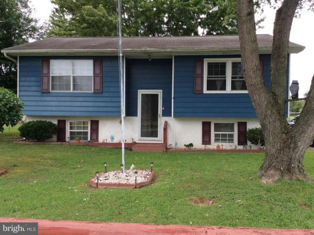 101 Roe Street, GREENSBORO, MD 21639 (#1004314632) :: Remax Preferred | Scott Kompa Group