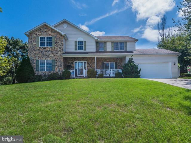 18 Summer Drive, DILLSBURG, PA 17019 (#1004360858) :: The Heather Neidlinger Team With Berkshire Hathaway HomeServices Homesale Realty