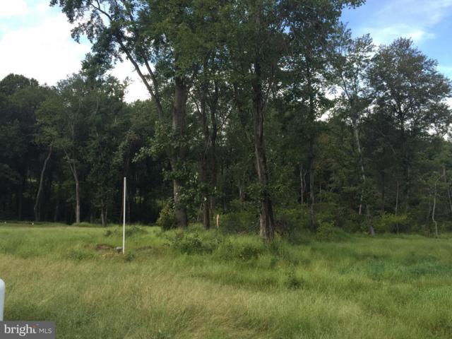 14528 Old Frederick Road, COOKSVILLE, MD 21723 (#1004623998) :: Colgan Real Estate