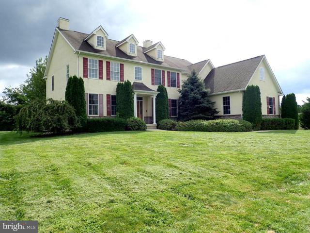 88 Springfield Drive, NORTH EAST, MD 21901 (#1004649210) :: Colgan Real Estate