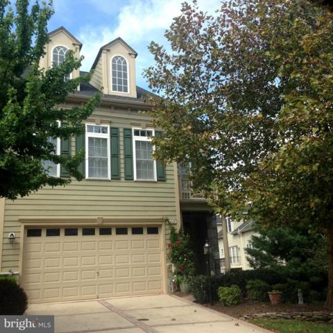 43668 Palmetto Dunes Terrace, LEESBURG, VA 20176 (#1004666196) :: Jim Bass Group of Real Estate Teams, LLC