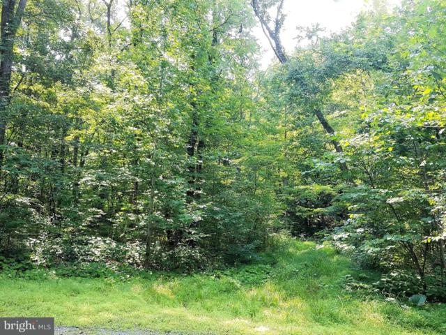 Lot #64 Candlemoss Drive, JAMES CREEK, PA 16657 (#1004733656) :: The Heather Neidlinger Team With Berkshire Hathaway HomeServices Homesale Realty