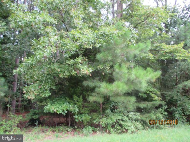 Calvert Avenue, SAINT MICHAELS, MD 21663 (#1004992174) :: RE/MAX Coast and Country