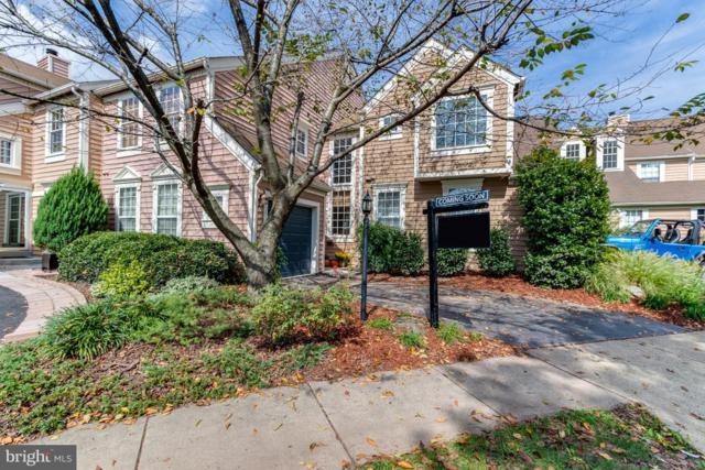 21121 Crocus Terrace, ASHBURN, VA 20147 (#1005332372) :: AJ Team Realty