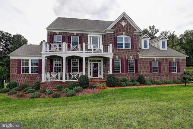 15774 Dorneywood Drive, LEESBURG, VA 20176 (#1005350548) :: The Maryland Group of Long & Foster