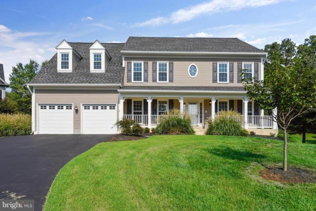 17704 Cricket Hill Drive, GERMANTOWN, MD 20874 (#1005385578) :: Remax Preferred | Scott Kompa Group