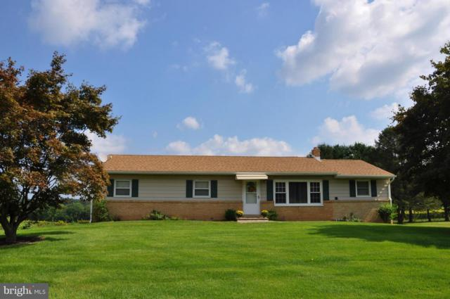 525 Muddy Creek Forks Road, BROGUE, PA 17309 (#1005430968) :: Teampete Realty Services, Inc