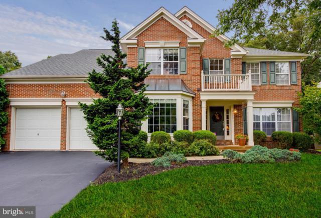 8412 Holstein Pony Court, GAINESVILLE, VA 20155 (#1005473726) :: Colgan Real Estate