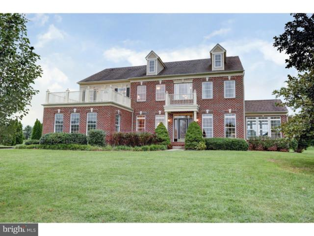 62 Bay Boulevard, NEWARK, DE 19702 (#1005534156) :: Colgan Real Estate
