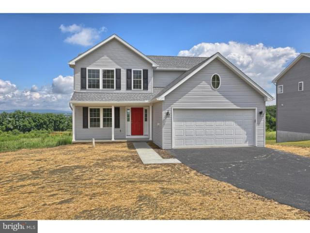 119 Hill Road, BLANDON, PA 19510 (#1005605852) :: Colgan Real Estate