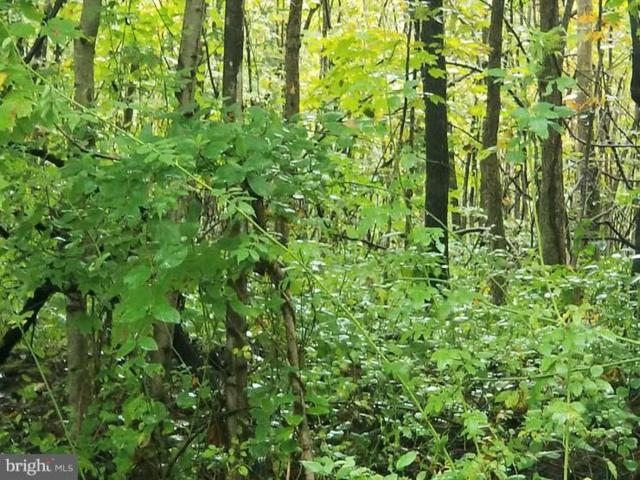 Lot 2 Phase 2 Scattered Acres Road, MIFFLIN, PA 17058 (#1005608050) :: The Joy Daniels Real Estate Group