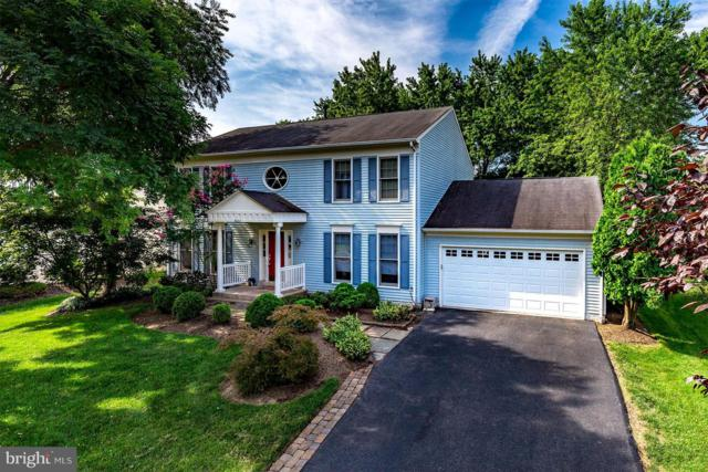 5233 Glen Meadow Road, CENTREVILLE, VA 20120 (#1005610628) :: Circadian Realty Group