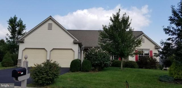 180 Blackbird Lane, HUMMELSTOWN, PA 17036 (#1005617804) :: The Heather Neidlinger Team With Berkshire Hathaway HomeServices Homesale Realty