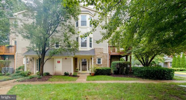 4329 Runabout Lane #176, FAIRFAX, VA 22030 (#1005655582) :: McKee Kubasko Group