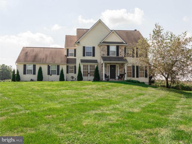 325 Mill Pond Lane, OXFORD, PA 19363 (#1005740370) :: Colgan Real Estate