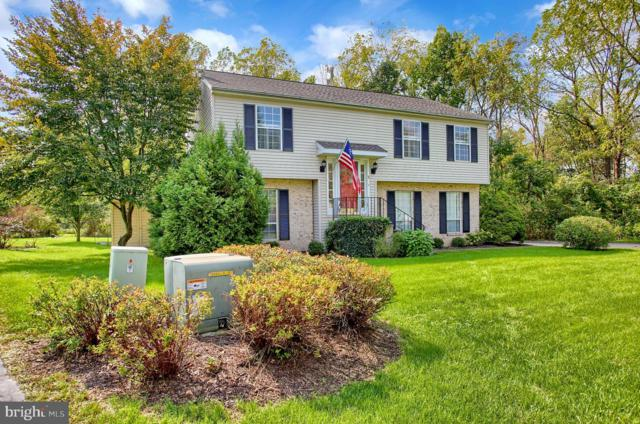 8 Wooded Run Drive, DILLSBURG, PA 17019 (#1005990492) :: The Heather Neidlinger Team With Berkshire Hathaway HomeServices Homesale Realty