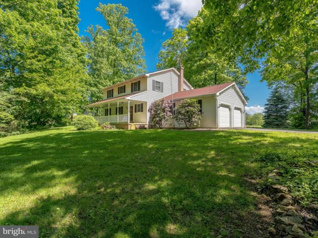 46 Amy Drive, GAP, PA 17527 (#1005995792) :: Teampete Realty Services, Inc