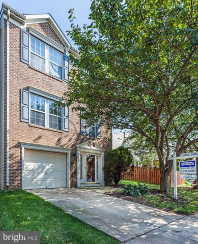 6993 Rogue Forest Lane, GAINESVILLE, VA 20155 (#1006018900) :: Great Falls Great Homes