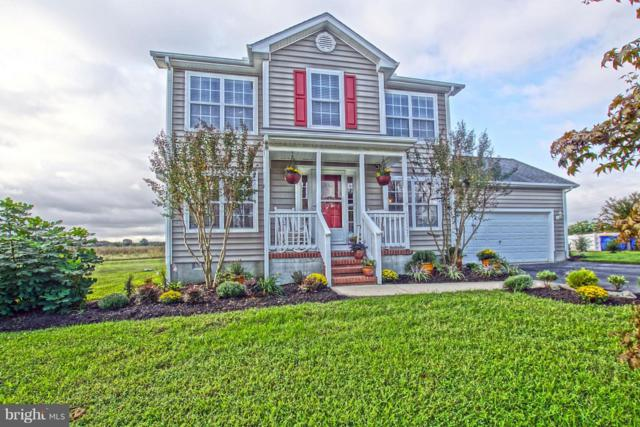 30823 Farmview Court, LEWES, DE 19958 (#1006058188) :: RE/MAX Coast and Country