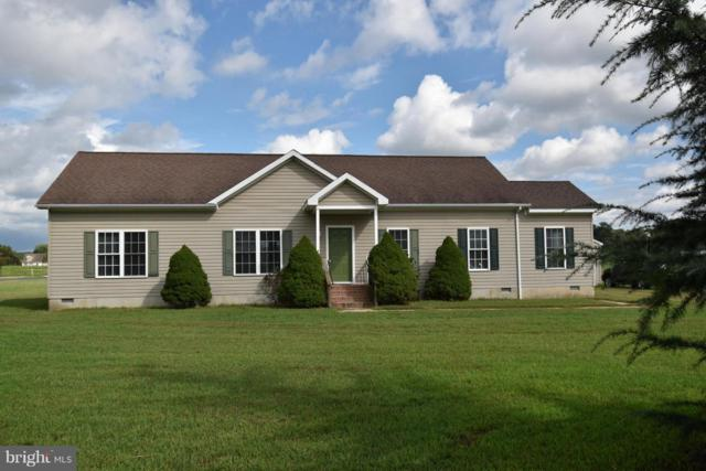 6115 Red Haven Road, EAST NEW MARKET, MD 21631 (#1006058560) :: Atlantic Shores Realty