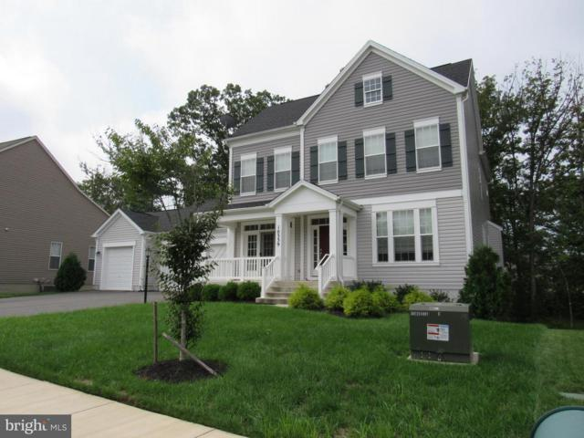 10339 Spring Iris Drive, BRISTOW, VA 20136 (#1006073368) :: Colgan Real Estate