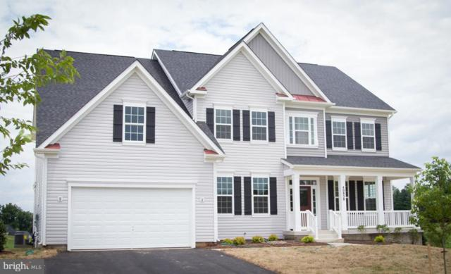 Amy's Meadow Place, LEESBURG, VA 20176 (#1006134196) :: Green Tree Realty