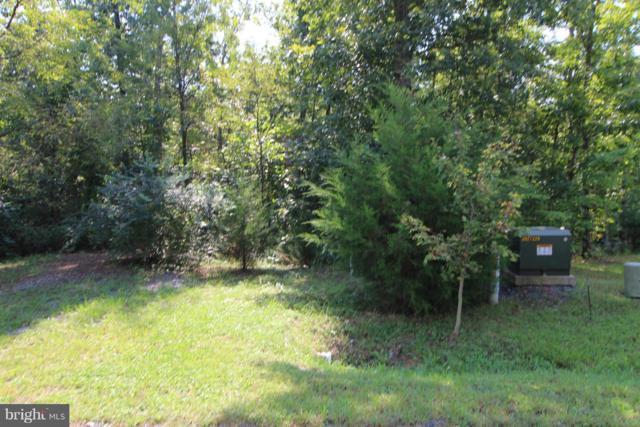 Timber Ridge Drive, FRONT ROYAL, VA 22630 (#1006136404) :: ExecuHome Realty