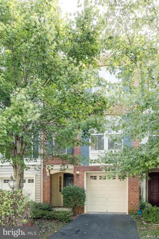 43110 Hunters Green Sq. Square, BROADLANDS, VA 20148 (#1006139022) :: Browning Homes Group