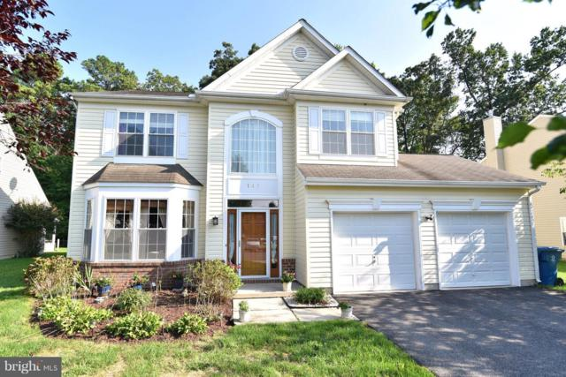 145 Web Foot Lane, STEVENSVILLE, MD 21666 (#1006146048) :: Colgan Real Estate