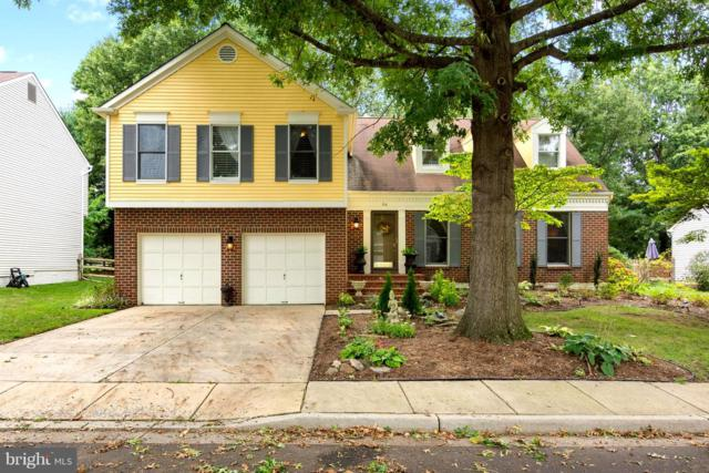 313 Canterfield Road, ANNAPOLIS, MD 21403 (#1006210192) :: Colgan Real Estate