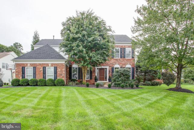 20440 Brightwater Place, POTOMAC FALLS, VA 20165 (#1006221660) :: Great Falls Great Homes