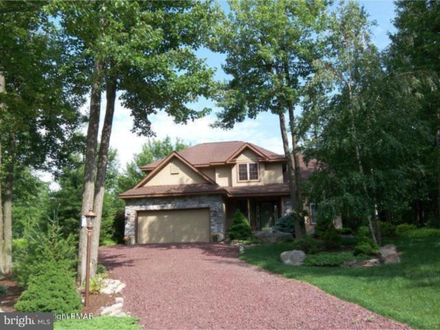 12 Kent Clark Road, LAKE HARMONY, PA 18624 (#1006586846) :: Colgan Real Estate