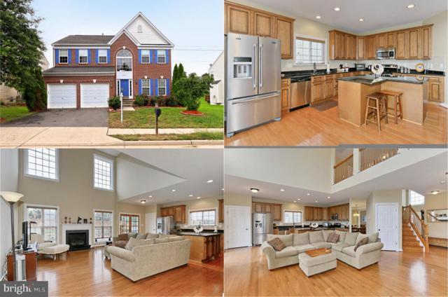 6672 Jackson Fields Court, CENTREVILLE, VA 20121 (#1006813128) :: Colgan Real Estate