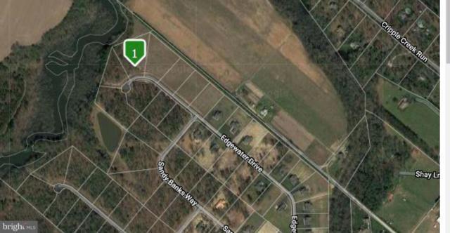 16314 Edgewater Court, MILTON, DE 19968 (#1007065538) :: Barrows and Associates